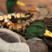 duck-gear_1920x1200