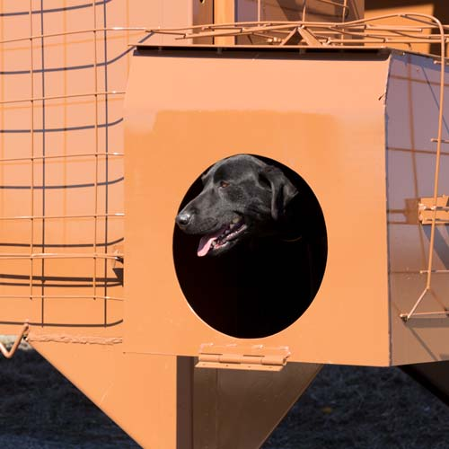 dog-box_500x500